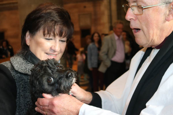 Successful Pets' Service and Blessing at St Anne's Cathedral