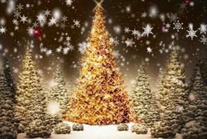 'Joy To the World' Christmas Tree Festival in Greenisland
