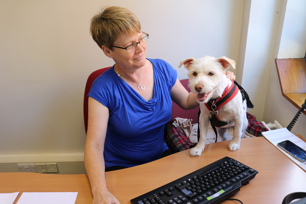 Lucy gets paws-on work experience!