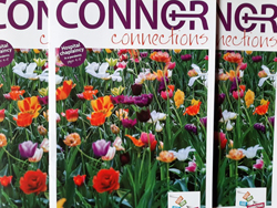'Connor Connections' magazine in parishes for Easter Sunday